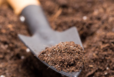 soil used for organic farming